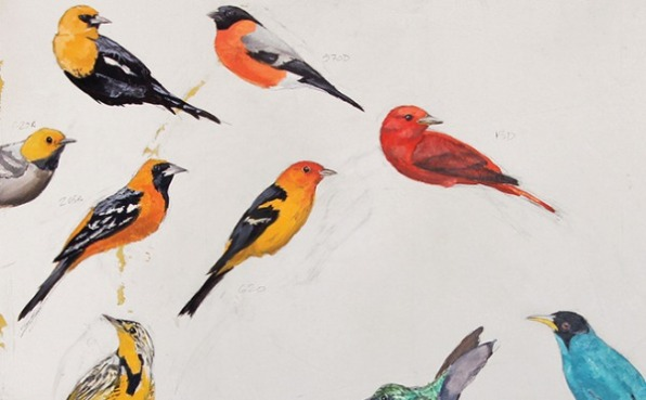 Birds in Art 2020 Image