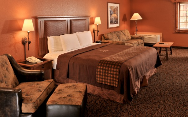 Single King Bed Hotel Room